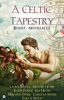 A Celtic Tapestry Boxset, an ebook by Anthology Authors at Smashwords Celtic Festival, Best Book Covers, Cool Books, Hunter S, Stork, Book Cover Design, Book Authors, Short Stories, Ebooks