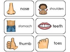 Fantastic Absolutely Free preschool printables flashcards Popular : Do you usually wonder the best way to manage everthing? No matter if you have Montessori education and learning as well Preschool Body Theme, Free Preschool, Preschool Printables, Flashcards For Kids, Printable Flashcards, Spelling Activities, Toddler Activities, Health Unit, Human Body Parts