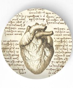 Da Vinci's insights into the workings of the human heart were not rediscovered until way into the 20th century. What an amazing man!