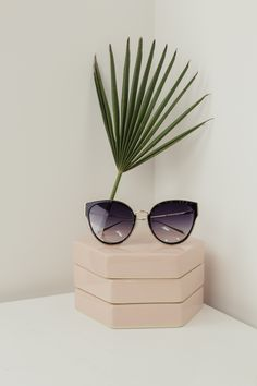 CONTEMPORARY STILL LIFE PHOTOGRAPHY ARRANGEMENT, LUXURY FASHION SUNGLASSES ART, FASHION STYLING WITH PLANT OBJECT, FAS FOR ARTS SAKE EYEWEAR