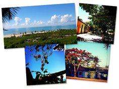 Jacaré do Brasil vai assinar o décor da Casa Glamurama Trancoso  http://glamurama.uol.com.br/jacare-do-brasil-vai-assinar-o-decor-da-casa-glamurama-trancoso/