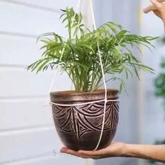 Diy Crafts Hacks, Diy Home Crafts, Garden Crafts, Garden Projects, Plant Crafts, House Plants Decor, Plant Decor, Home Plants, Pots For Plants