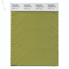 PANTONE 16-0543 Golden Lime Earthy tones with a twist, the golden undertones of Golden Lime makes this yellow-green shade a refreshing complement to Fall classics.