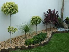 Browse images of modern Garden designs by VIVERO CUMBRES ELITE. Find the best photos for ideas & inspiration to create your perfect home.