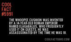 Cool-Fact-5991