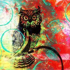 Owl by Sophia Buddenhagen
