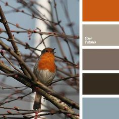 Colours of spring are always attractive, even if they are not bright and light. Dilute rich dark shades of brown-gray with light and pastel orange or blue.