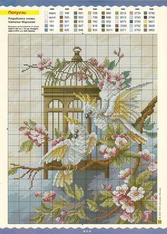 Cockatoos, birdcage