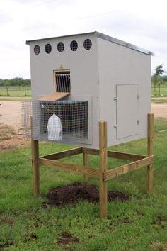 Small Pigeon Loft Design Ideas Pigeon Coop Hobby Farming
