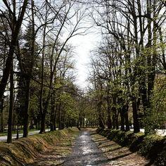 #nature #serbia #mostljubavi #europe