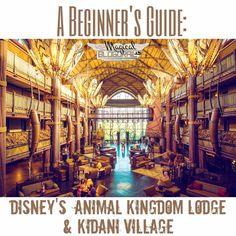 The Magical Blogorail: Beginner's Guide: Disney's Animal Kingdom Lodge & Kidani Village