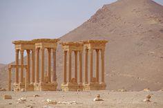 https://flic.kr/p/97Kk7c | Palmyra