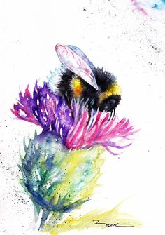 cute animals to draw Bee, Print of Original watercolour painting by Artist Be Coventry wildlife Art Watercolor Animals, Watercolor Print, Watercolor Flowers, Tattoo Watercolor, Watercolour Butterfly, Painting Flowers, Bee Painting, Painting Prints, Art Mur