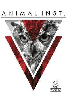 INSTINTO ANIMAL. Adaptarse, sobrevivir, NO RENUNCIAR. #ActitudVoltta www.voltta.com.co Street Style, Animal, Cards, Movie Posters, Design, Giving Up, Urban Style, Film Poster