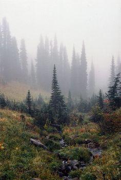 Nature Landscape, Landscape Designs, Landscape Photos, Beautiful World, Beautiful Places, Amazing Places, Landscape Photography, Nature Photography, Scenic Photography