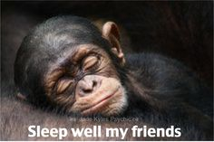 Sleep well my friends. ♡ Many blessings Jade Kyles Psychic ♡ Thanks for connecting. I would love you to visit me at www.jadekyles.com or on fb at www.facebook.com/jadekylespsychic . You can also subscribe to my channel at www.youtube.com/jadekylespsychic