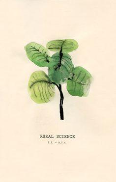 rural science