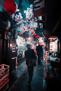 Omoide Yokocho. My first trip to Japan! So happy to have been able to shoot pictures there.