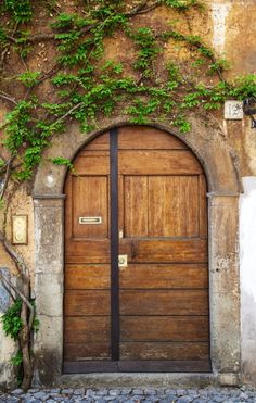 Rome, Italy. The greenery above the door makes this special. Otherwise, it's not the most beautiful door I have seen. Many people think that things should not grow on walls. That's just NOT TRUE