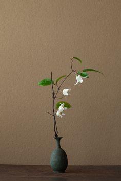 2012年3月18日(日)まさに呼び鈴のよう。「ウィンターベル」という名の花です。   花=クレマチス   器=青銅王子形水瓶(六朝時代)