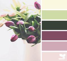 tulip hues