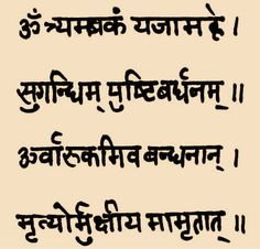 """Hinduism has 10 main rules, split into things you should do and should not do. Meat, fish, poultry, and eggs are forbidden in the Vedas and most hindus are vegetarians altogether. They are not to consume alcohol, caffeine,  garlic, onions or mushrooms. Prayer is an integral part of religion and chanting of """"mantras"""" is the most popular form of worship."""
