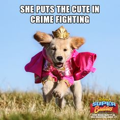 She puts the cute in crime fighting.