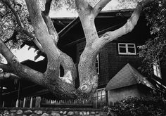 """Yasuhiro Ishimoto: Bilingual Photography and the Architecture of Greene & Greene """"Yasuhiro Ishimoto's beautifully sensitive photographs of famous Greene & Greene commissions are extraordinary in their composition, texture, and perception, and will..."""