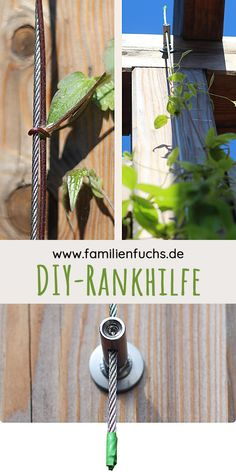 DIY: Rankhilfe selber bauen. Deine Kletterpflanze braucht eine Rankhilfe? Du findest kein geeignetes Rankseilsystem? Wir zeigen dir, wie du eine Kletterhilfe selber bauen kannst. Und das mit einfachen Mitteln. Günstig, schnell gebaut und unverwüstlich!