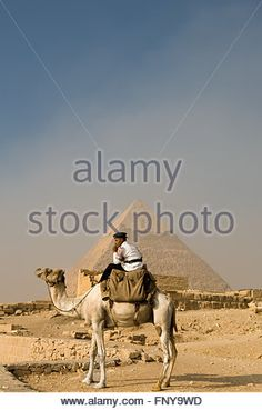 CAIRO, EGYPT - JULY 20: The Giza Necropolis with a tourism police riding a camel by the archaeological site , On - Stock Photo