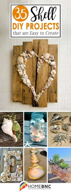 DIY Shell Ideas