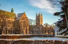 Boston College, Cathedral, Building, Travel, Viajes, Buildings, Cathedrals, Destinations, Traveling