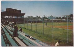 Fort Myers, Florida Postcard Pittsburgh Pirates Terry Park Baseball Field c1960s