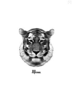 Tiger Says Meow by The Minimalist