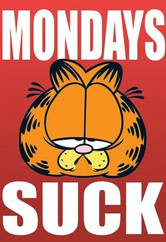 I Hate Mondays: Watch This Hilarious Garfield Def Comedy Jam Frases Garfield, Garfield Quotes, Garfield Cartoon, Garfield Comics, Cartoon Jokes, Monday Humor, Monday Quotes, It's Monday, Happy Monday