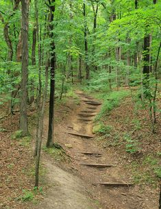 Pere Marquette State Park - Grafton, Illinois is on the featured destination list for THE AMAZING CAMP-LAND RACE