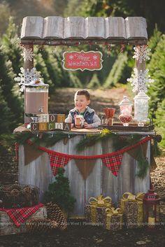 hot cocoa photos, hot cocoa, hot chocolate, christmas photos, tree farm photos…