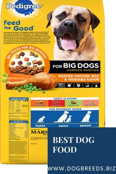 Best Dog Food - Natural Balance Limited Ingredient Diets Dry Dog Food - Purina ONE SmartBlend True Instinct Turkey Free Dog Food, Best Dog Food, Best Dogs, Small Dog Breeds, Small Breed, Types Of Dog Food, Hypoallergenic Dog Food, Dog Food Comparison, Dog Food Reviews
