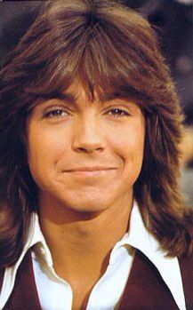 David Cassidy is a retired actor, singer, songwriter. He is widely known for his role as Keith Partridge in the musical-sitcom The Partridge Family, David Cassidy, Charlie Rich, Shirley Jones, The Osmonds, Donny Osmond, Partridge Family, The Most Beautiful Girl, Gorgeous Guys, Beautiful People