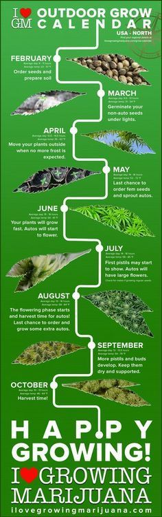 outdoor grow calendar cannabis