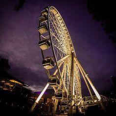 The wheel lighting up the Brisbane night sky by Brisbane City, Brisbane Australia, Sunshine State, Sunshine Coast, Commonwealth, Gold Coast, Night Skies, Jewels, Explore