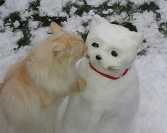 Snow Kitty | Community Post: 40 Creative Snowmen and Other Snow Sculptures