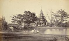 View in the Eden Gardens [Calcutta]