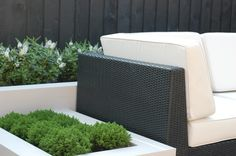 Find home projects from professionals for ideas & inspiration. Garden in West London by Paul Newman Landscapes | homify