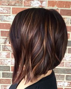 Highlights dark hair