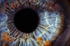 Into the Eyeballs of Syrian Refugees  Is it really a good idea to scan the irises of thousands of vulnerable people?