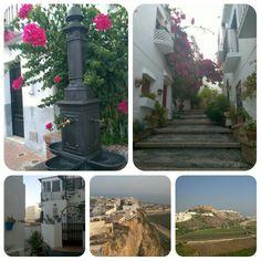 Spain, Outdoor Decor, Plants, Home Decor, Decoration Home, Room Decor, Sevilla Spain, Plant, Home Interior Design