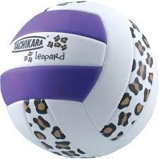 When the Dionysus hit up the camp's volleyball court, they bring their own ball :3