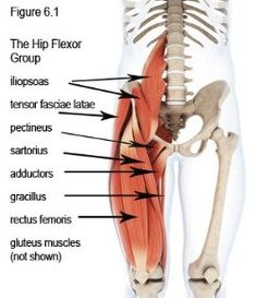 Loosen Up And Relax Tight Hips with these 10 Hip Flexor Stretches (Helps Relieve Lower Back Pain!) Loosen Up And Relax Tight Hips with these 10 Hip Flexor Stretches (Helps Relieve Lower Back Pain! Hip Flexor Pain, Hip Flexor Exercises, Tight Hip Flexors, Hip Pain, Low Back Pain, Hip Stretches, Flexibility Exercises, Flexibility Test, Psoas Iliaque