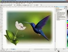 CorelDRAW A Powerful and Versatile Graphics Suite For aspiring artists or experienced.........